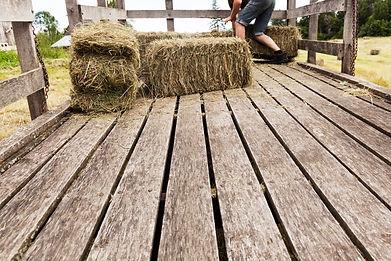 Loading hay bales into a wooden hay wago