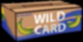 GARY CARD.png