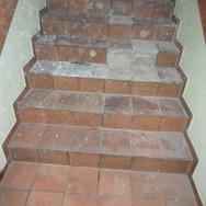 Treppenstufen-3.jpg