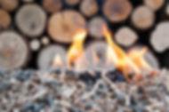 img_que_es_la_energia_biomasa_y_para_que