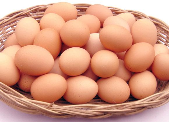 Yumurta 10 Adet