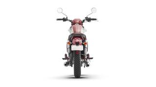 Dreambox Bike 00006.jpg