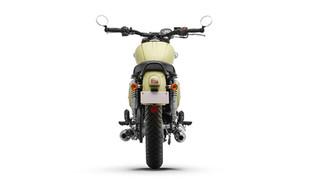 Dreambox Bike 00014.jpg