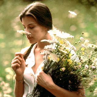 The Politics of Girlhood in Film – A study of Stealing Beauty, The Virgin Suicides, and Lady Bird