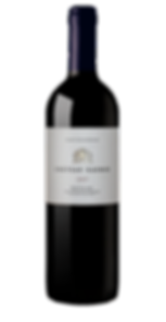 chateau-gaudin-pauillac-2007-G2.png