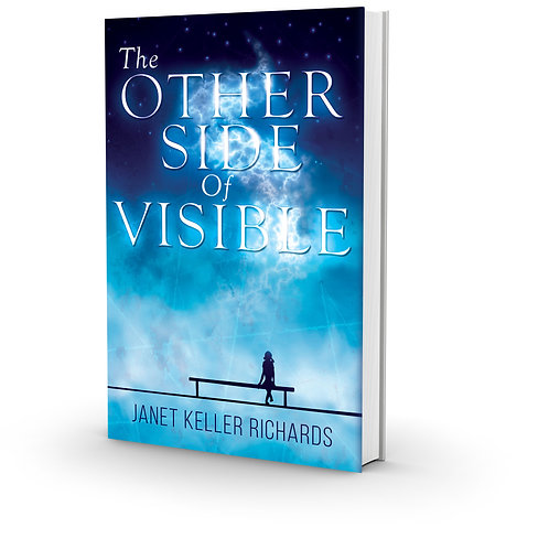 The Other Side of Visible (Paperback)