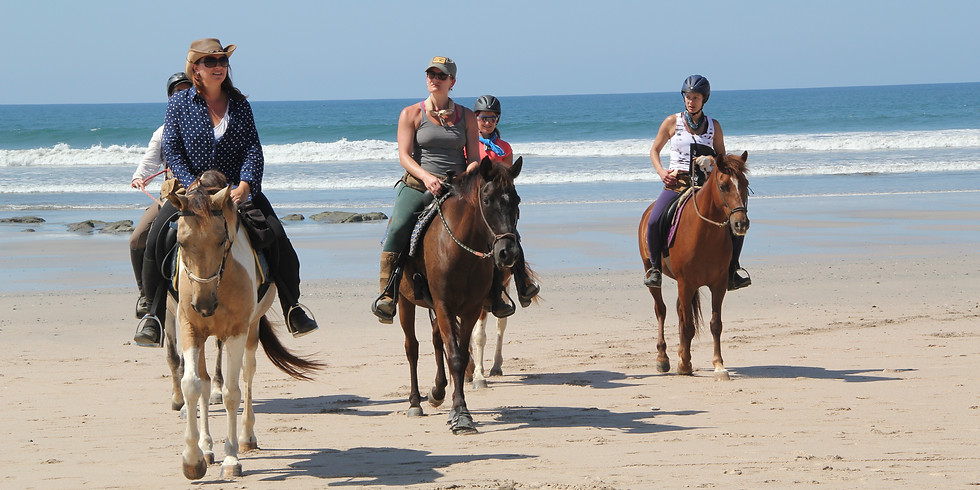 Seeking Harmony: Yoga & Horse Retreat