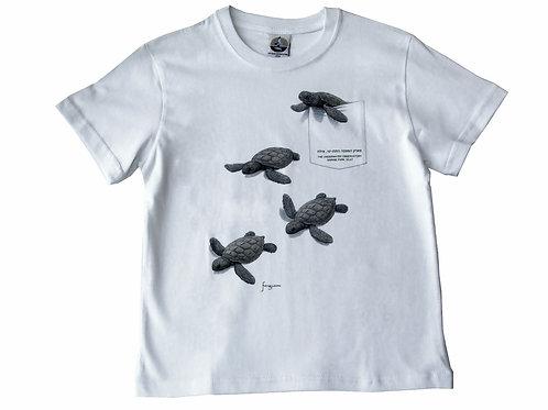 Pocket Turtles