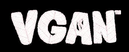 VGAN.png