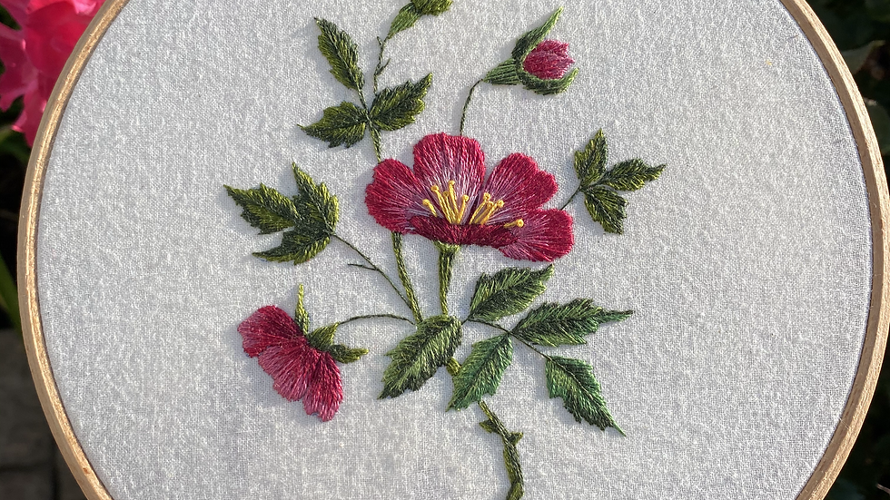 Vintage Wild Rose embroidery pattern