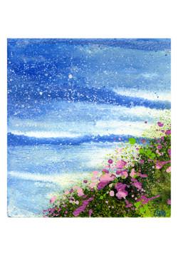 Seapink Flowers