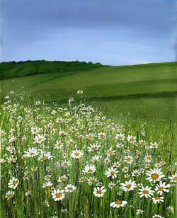 Moonpenny Meadow