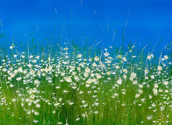 I Simply Live in the Meadow