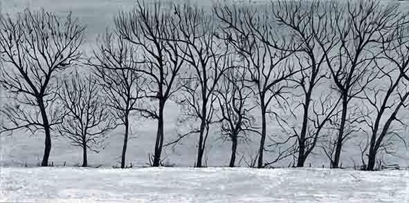 Winter's Sleep