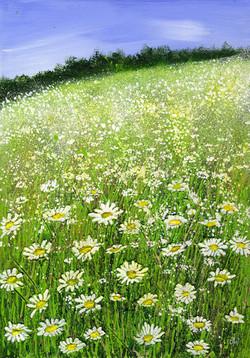Moon Daisy Meadow
