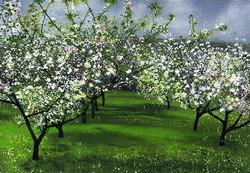 Flowers of Promised Fruit