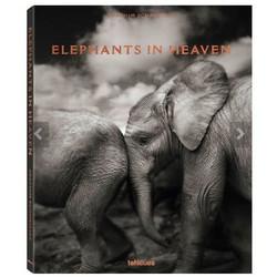 elephants-in-heavenjoachim-schmeisser-teneues