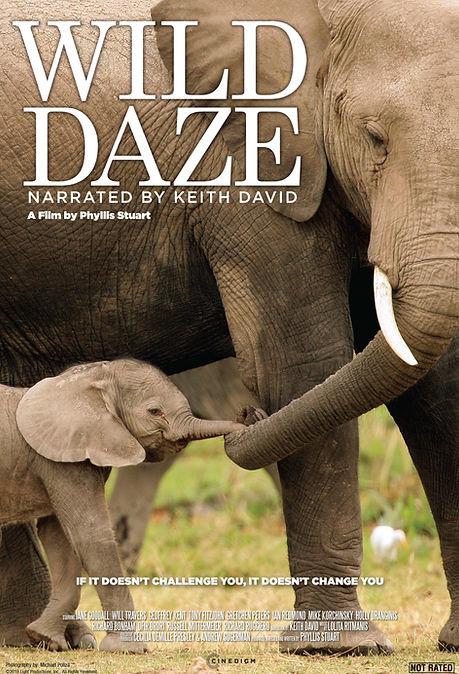 Wild Daze Poster 27x40.jpg