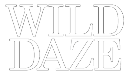WILD DAZE text transparent.png