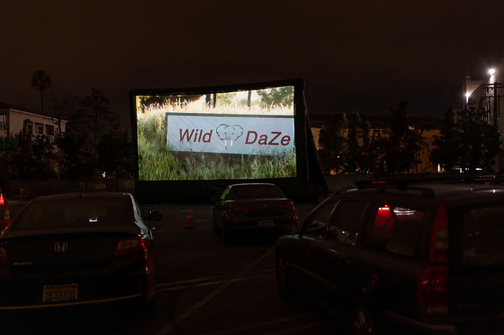 WILD DAZE title on SCREEN DRIVE IN.jpg