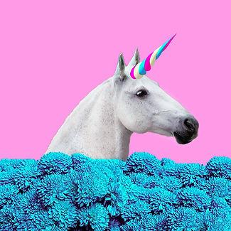 unicorn stock.jpg