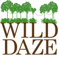 wild daze logo square clear.png