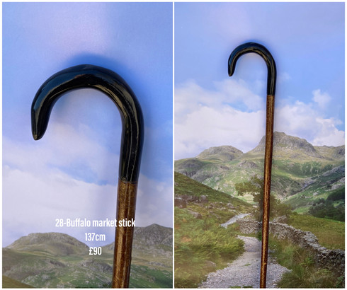 Sticks (5).jpeg