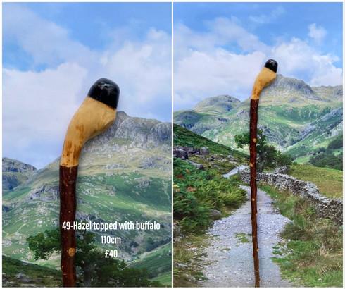 Sticks (18).jpeg