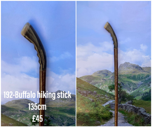 new sticks (35).jpeg