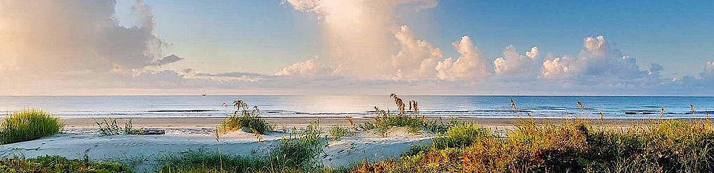 Kiawah Beach Banner 5_edited.png