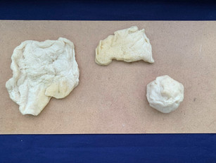 [Mdm Chiew] Plate, curry puff and pork bao, flour, salt, oil and warm water, dimensions varied, Aug 2020