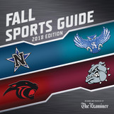 2018 Navasota Fall Sports Tab Cover.jpg