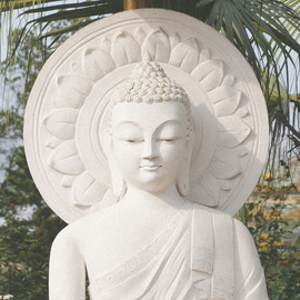 Buddha at Nun sactuary grain.jpg