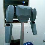 Humanoid Prototype