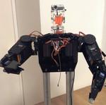 Torso Robot