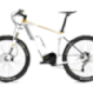 Eektriniu paspirtuku ir dviraciu nuoma -