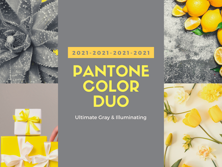 Pantone 2021 Color Duo