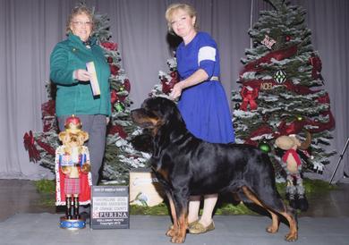 Abel wins Best of Breed at Shoreline KC