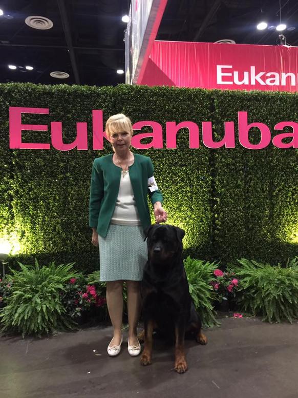 2016 AKC/Eukanuba National Championship