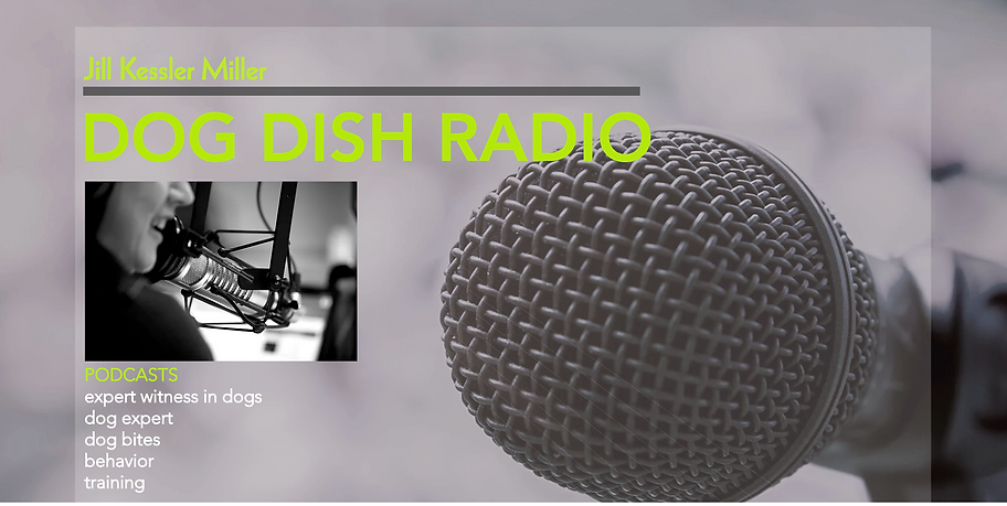 dogdishradio.com