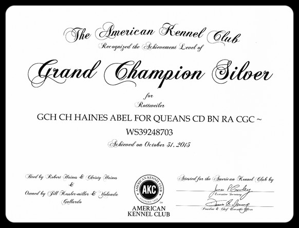 """Abel earned his """"Silver"""""""