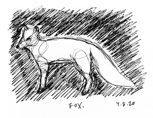 fox 1 2020-01.png