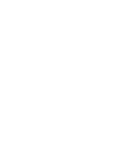Salon_S_logo_white2.png