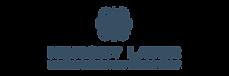 Memory Layer logo 2-01.png