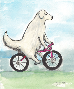 sketch Soda bicycle 2.1.png