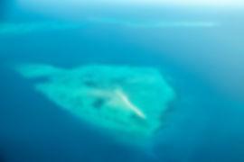 Beautiful Island near Zanzibar | Blue Sea | Tanzania | Shots and Tales