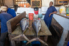 Fish stalls at the market | Stone Town | Zanzibar | Tazania | Shots and Tales