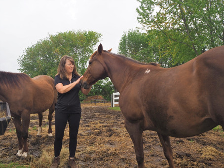 Manure Management Options for Hobby Farms