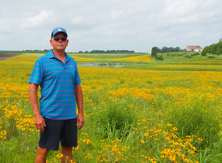 Restoration Brings 87 acres of Wetland Bank to Scott County