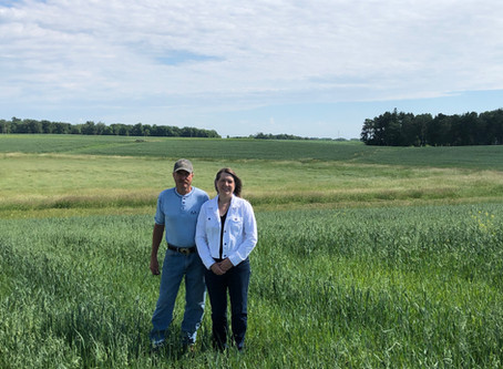 Sustainable Farming Protects Lowell Schmitz's Land in Belle Plaine